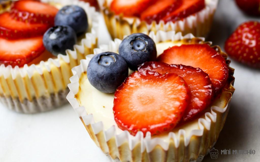mini yogurt cheesecakes 2-8