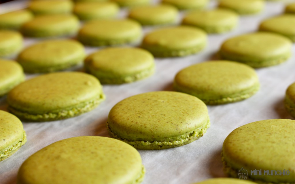 Pistachio Macarons | Mini Munchie
